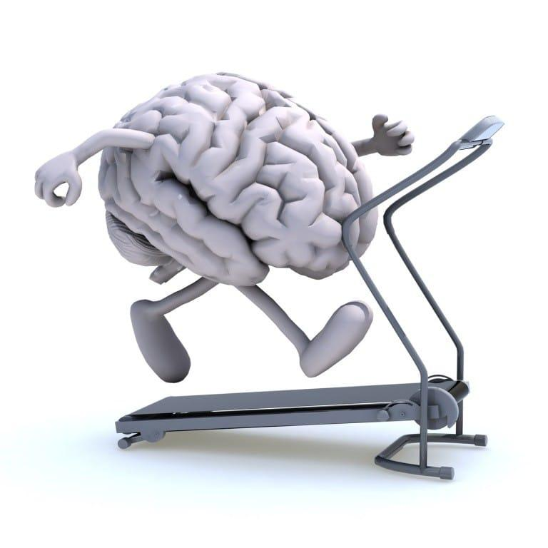 brain volume brain on treadmill image