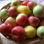 Gallbladder Health: Food and Recipes