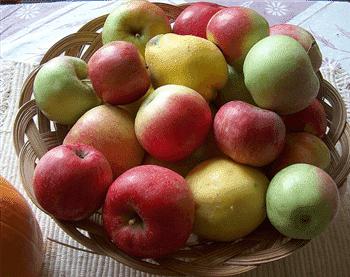 fat metabolism basket of apples image