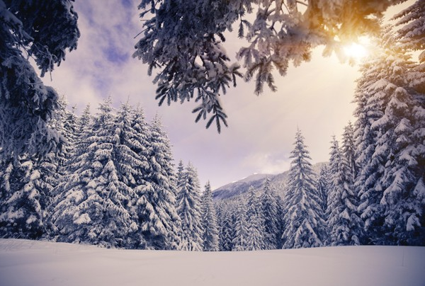 wintery-wonderland