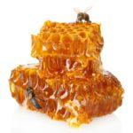 honey eaters beware honeycomb with bees image