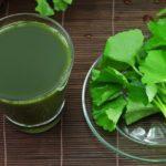 brahmi leaves and juice
