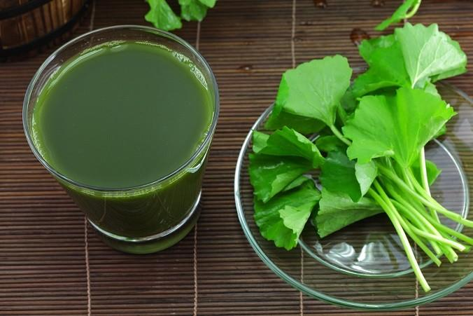 brahmi leaves and juice
