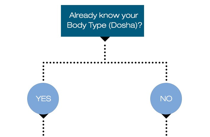 flow-chart_already-know-your-body-type