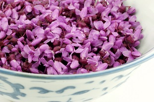redbud flower essence