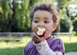 lifespa image, food combining, fruit, small child eating red apple, chew slowly