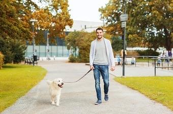 lifespa-image-man-walking-dog-sidewalk.