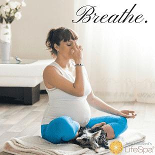 pregnant breath breathe dog text woman