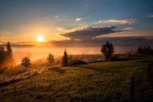 Sunrise over a pasture