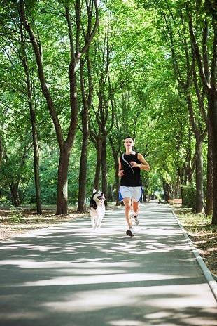 lifespa-image-man-morning-exercise-dog-running-trees-path.
