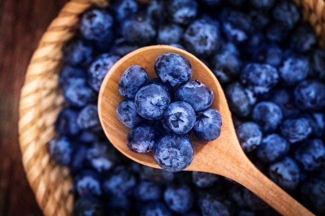 lifespa-image-blueberries-benefits-brain-lymph-autophagy