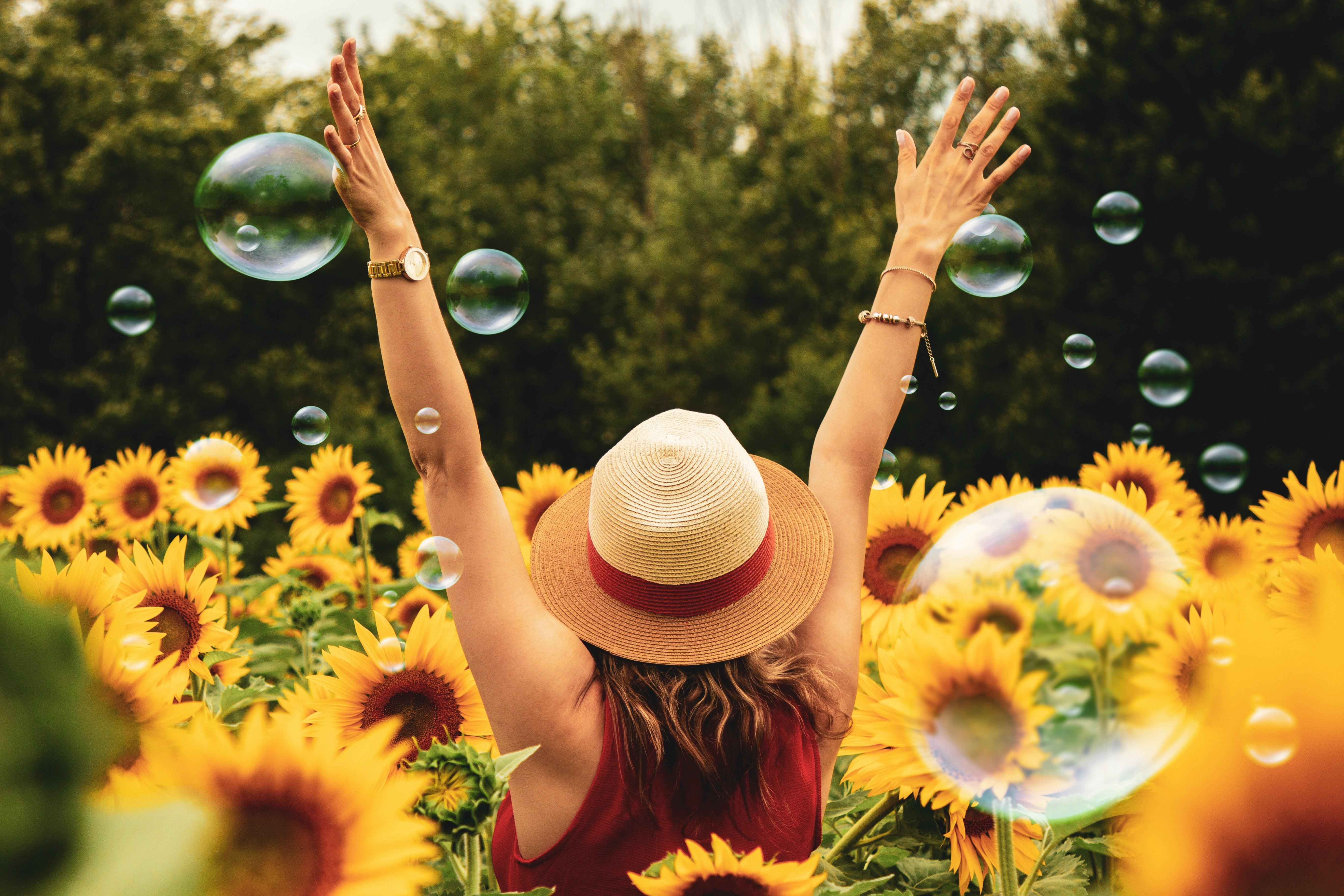 sun happy vitamin d pitta summer sunflowers
