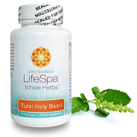 tulsi-holy-basil_herb