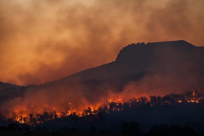forest fire and dark smoky sky