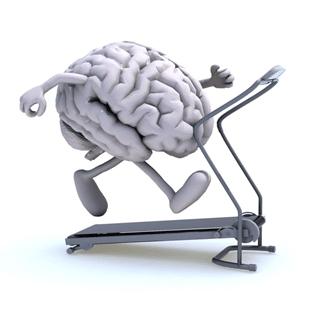 b<sub>12</sub> brain on treadmill image, b<sub>12</sub> deficiency