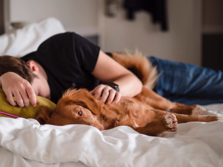 A man takes a nap with his dog